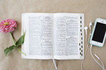 An open Bible between a pink flower and a cell phone.