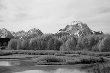 snow capped mountain peaks and marsh