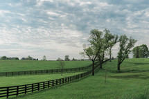 green grass and fence line