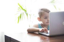 a little boy using a laptop computer