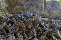 jagged rock texture