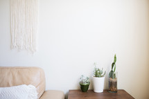 leather couch and potted plants on an end table