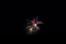 fireworks bursting in the night sky