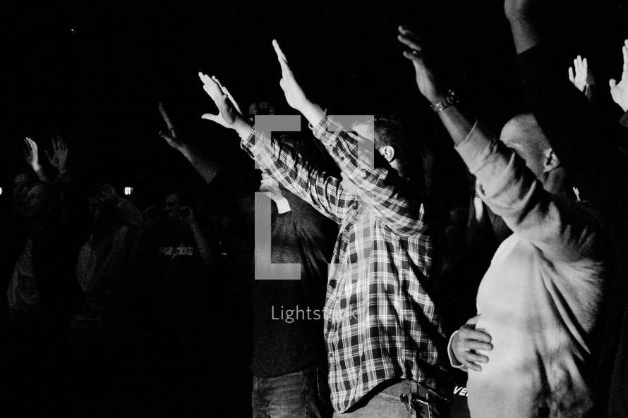 audience, crowd, hands raised, concert