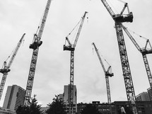 construction cranes in a city