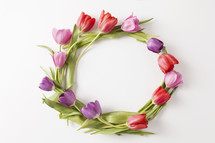 spring wreath of tulips