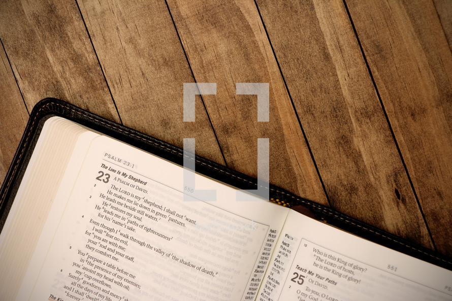 open pages of a Bible