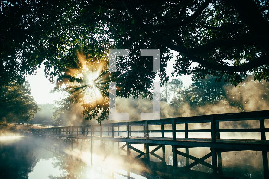 bridge over a steaming pond