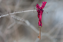 Skeleton key on a ribbon, tied to a twig outside.