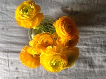 yellow peonies in a vase