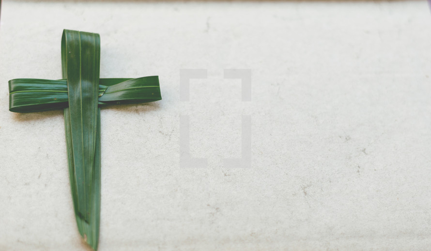 Palm Cross on white background
