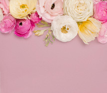 flower border on pink