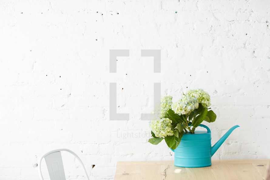 hydrangeas in a teal watering can on a table