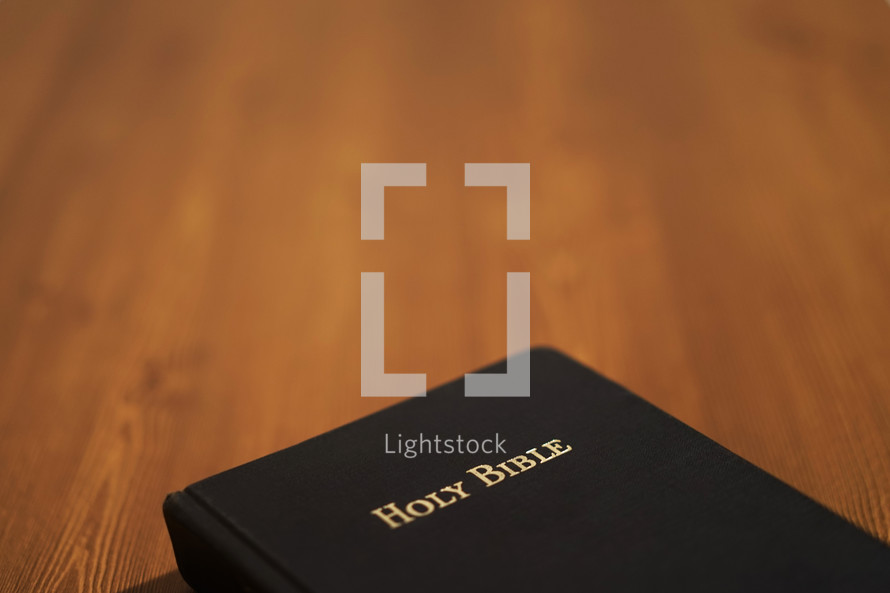 Holy Bible cover
