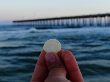 hand holding up a seashell and view of a pier