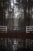 Gate in front of misty trees, reflected in the water
