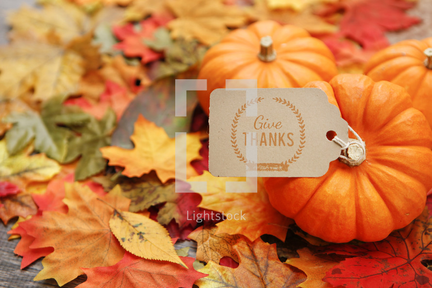 give thanks note on fall leaves
