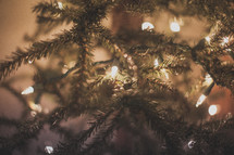 Close up of a Christmas tree with lights