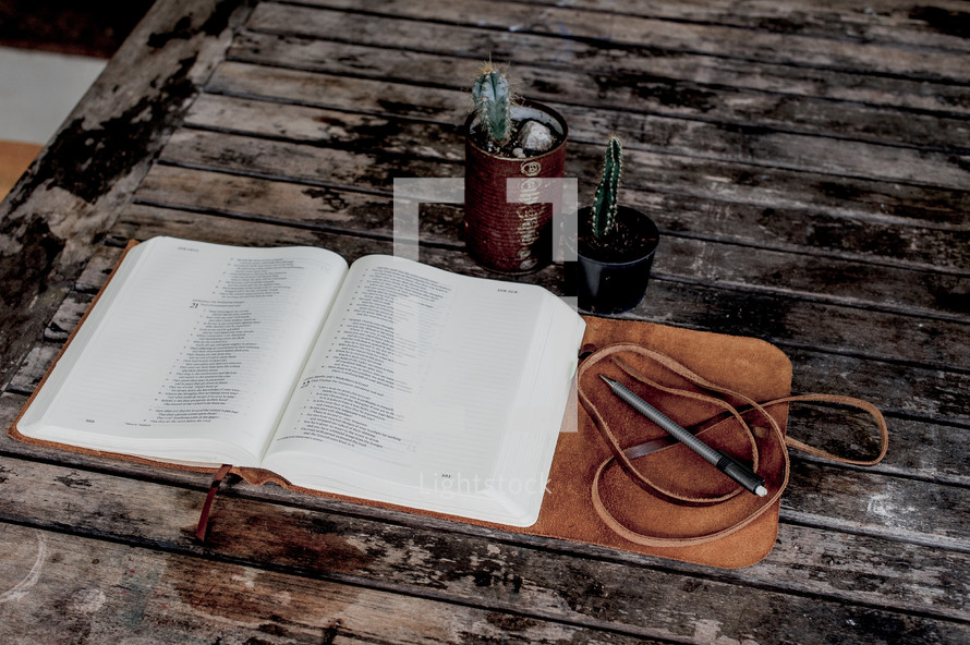 open leather bound Bible and potted cactus