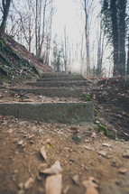 steps on an outdoor path
