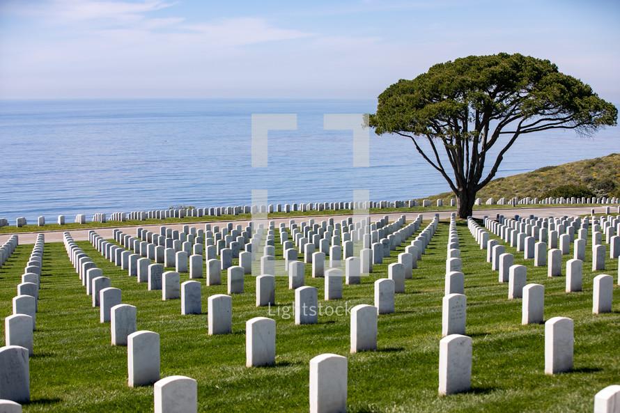 cemetery along a shore