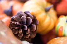 pine cones and pumpkins decorations