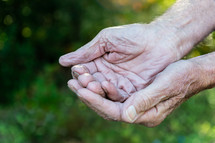 cupped hands of an elderly man