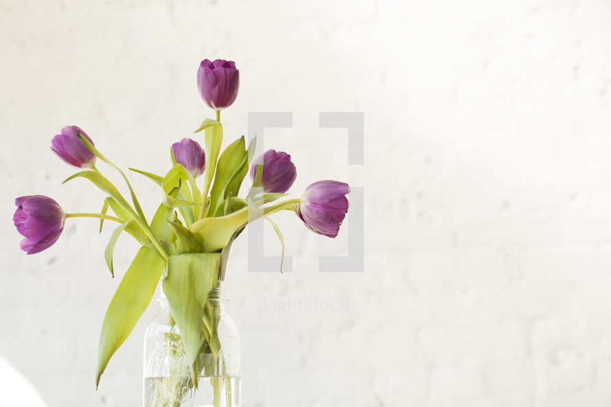 Tulips in a vase.