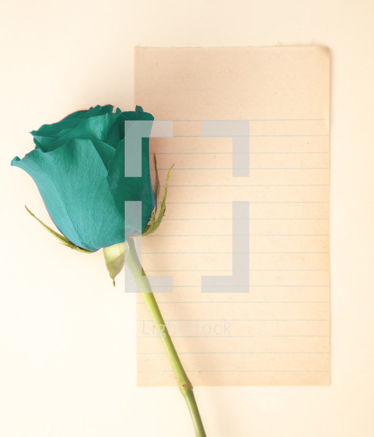 single rose and blank paper for a love letter