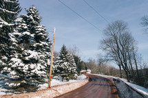 snow on pine trees and a plowed rural road