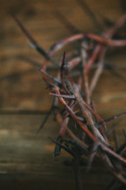 crown of thorns on wood