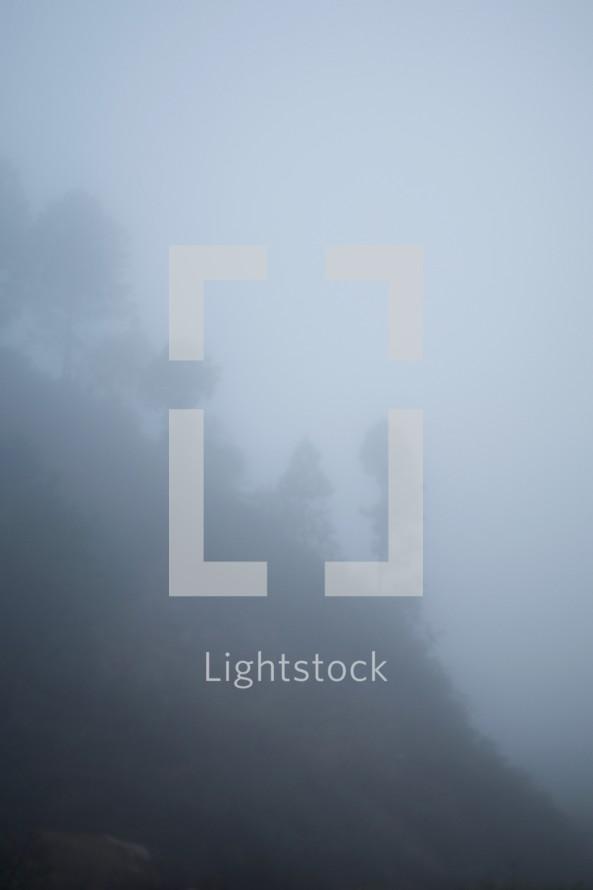 foggy mountainside