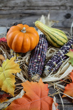 gourds, pumpkins, and corn