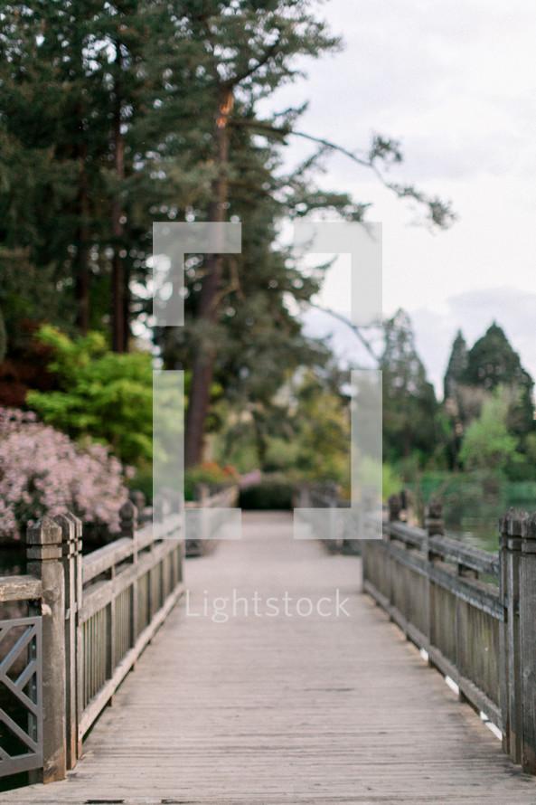 wooden foot bridge