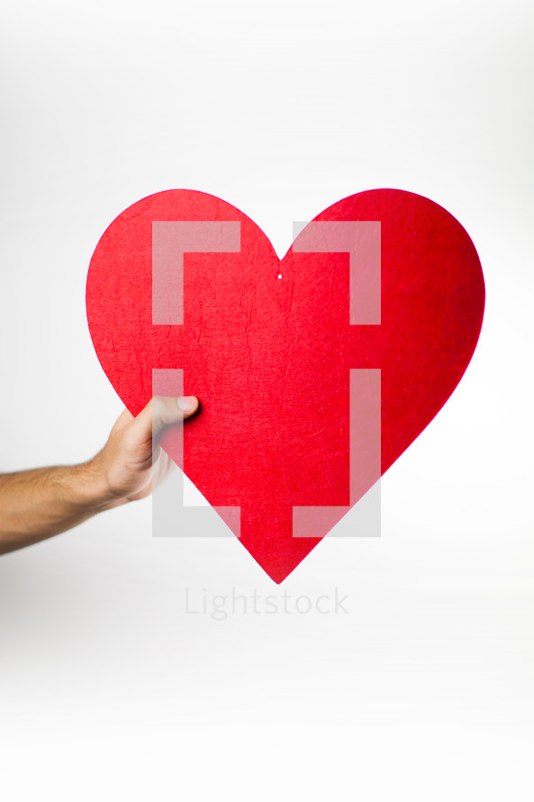 hold a red heart for valentines day