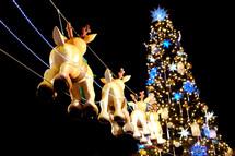 Christmas tree and Santa's reindeer outdoor Christmas light display