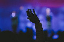 a raised hand at a concert