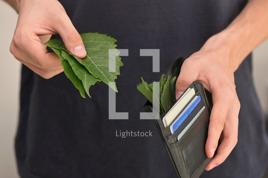 A Leather Wallet Stuffed With Leaves As Cash Money