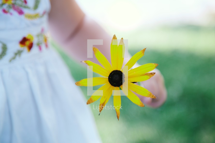 toddler girl holding a yellow flower