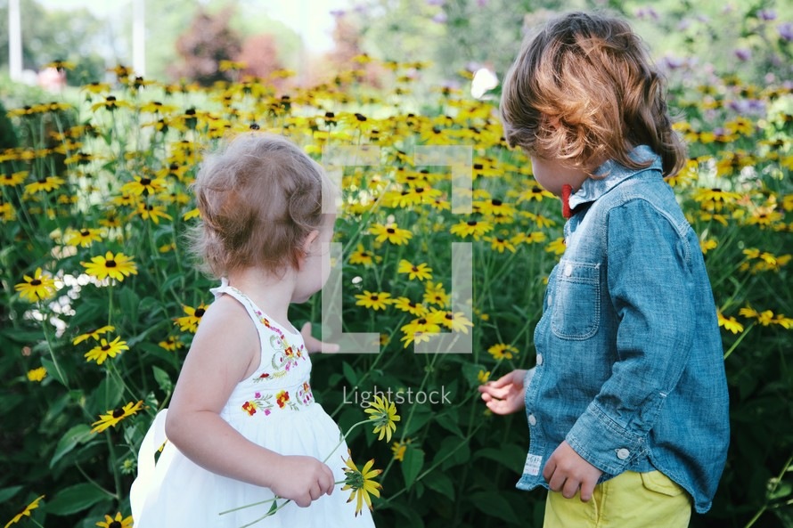 toddlers in a field of daisies