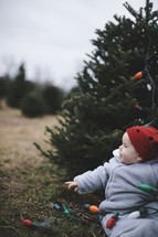 infant in a Christmas tree lot