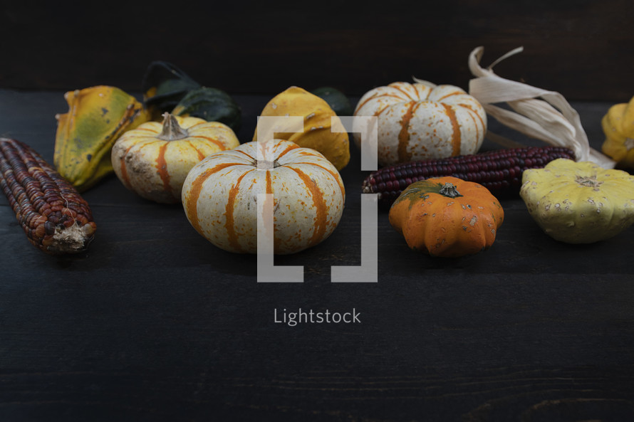 pumpkins and gourds on a black wood background