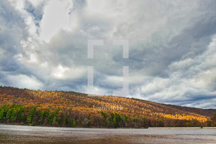 fall trees along a lake shore