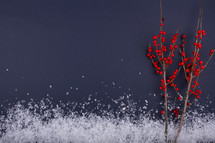 red berries and snow border