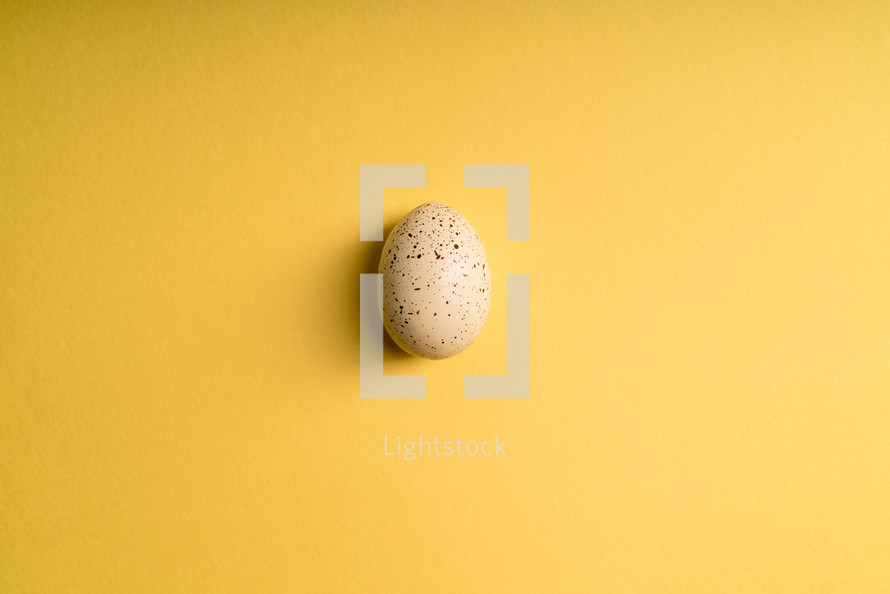 white speckled Easter egg on a yellow background