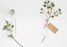 eucalyptus twig, votive candle, white background, gift tag, pencil, scissors