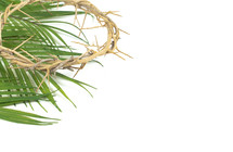 crown of thorns on palm fronds on a white background