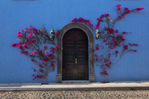 pink flowering vines around a doorway against a blue house