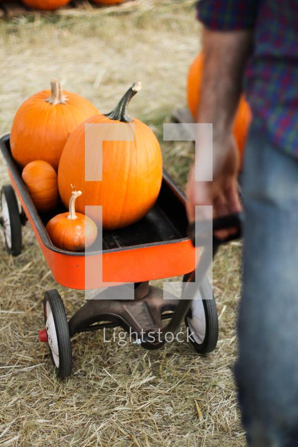 a man pulling pumpkins in a wagon