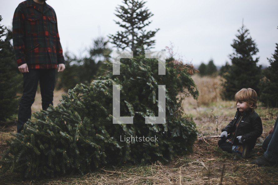 father and son in a Christmas tree lot